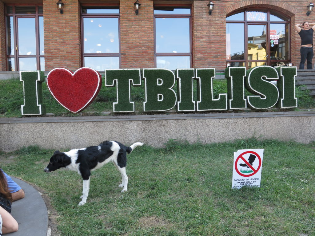 På gensyn Tbilisi