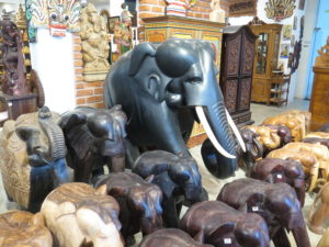 Elephants for sale