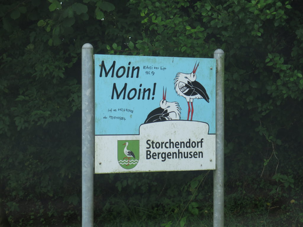 Velkommen til storkebyen Bergenhusen - byen med storke kun 60 km syd for den danske grænse