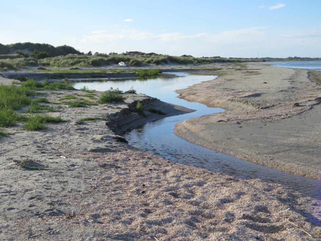 En lille å ved havet i Aalbæk