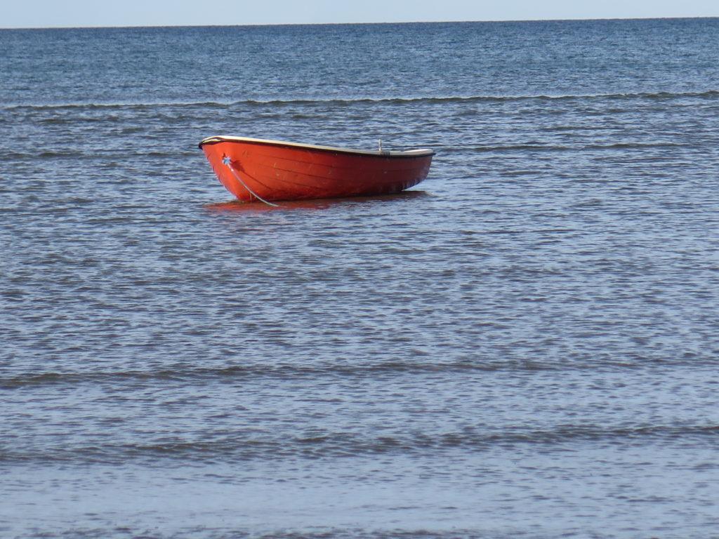 Ved vandet i Aalbæk
