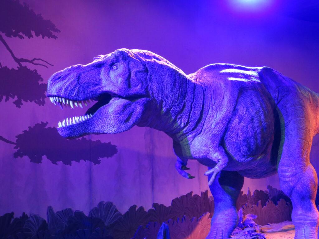 Dinosaur på museet