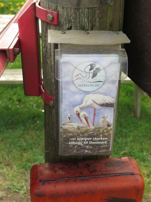Folder om storke. Hjælp med at få flere storke i Danmark