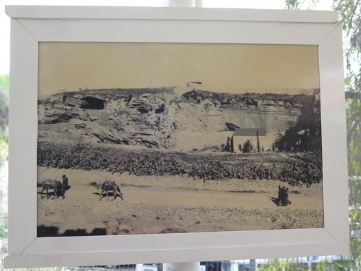 Foto af hovedskal fra slutningen af det 19. århundrede