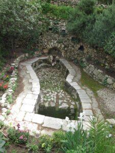 Vingård i Garden Tomb