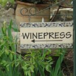 Winepress i Garden Tomb
