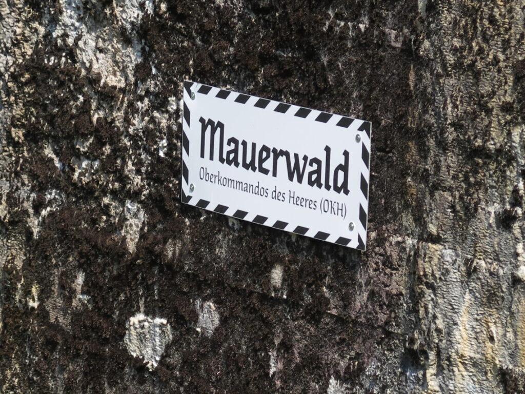 Indgang til bunker i Mauerwald og Enigma-kodemaskinen