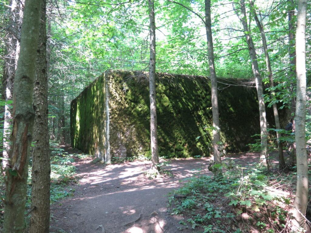 Bunker set udefra i Mauerwald