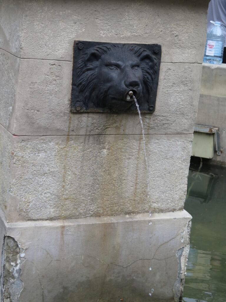 Springvand i Lviv - Løvernes by