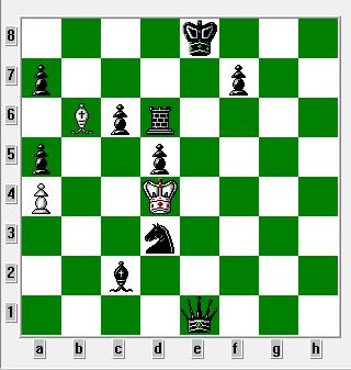 Hvis må flytte kongen til d4. 1864 og skak på 64 felter