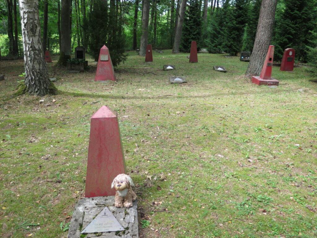 Et kig ud over kirkegården
