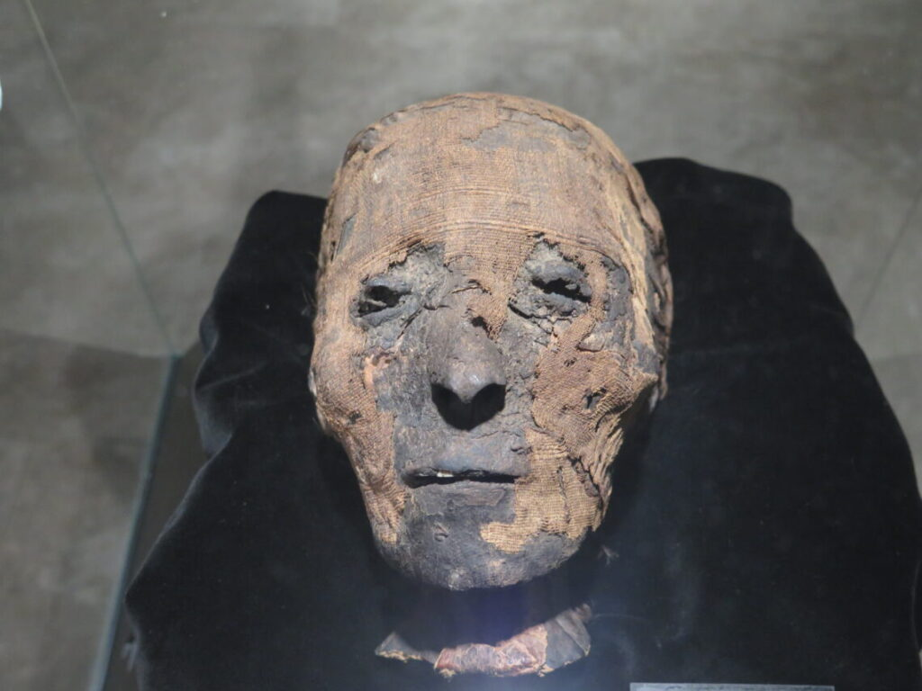 Den danske mumie på museet Ifergan Collection i Malaga