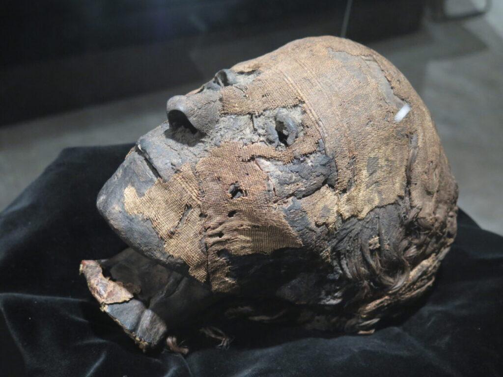 Den danske mumie