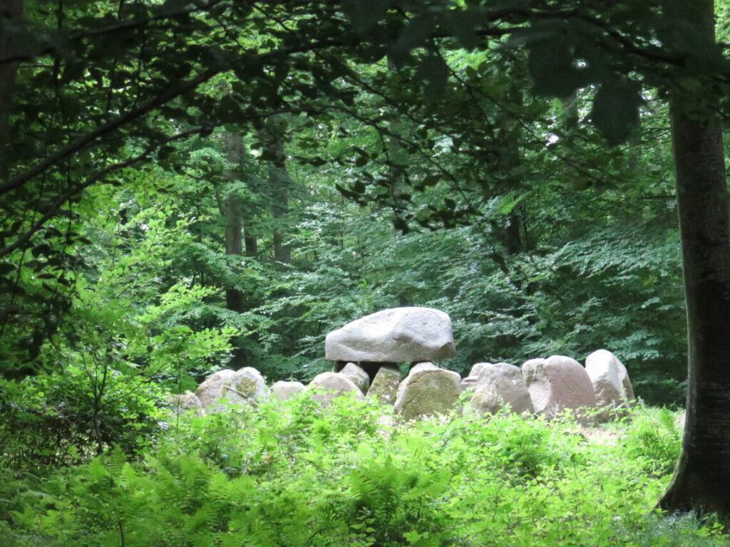 Kettinge Runddysse i Frejlev skov blev restaureret i 2012