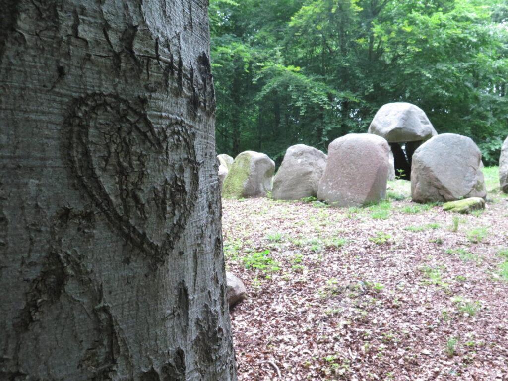 En kærlighedserklæring i et træ ved runddyssen