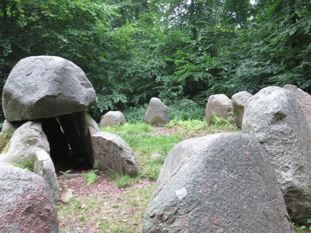Runddysse i Frejlev skov med en del af de omliggende 20 sten