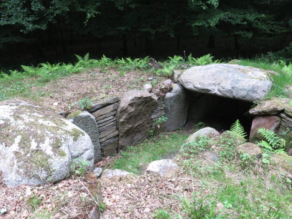 Sidenius jættestue. Fortidsminder i Frejlev skov