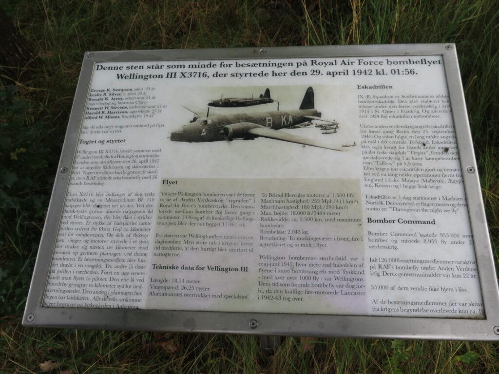 Tavle der beskriver flystyrtet